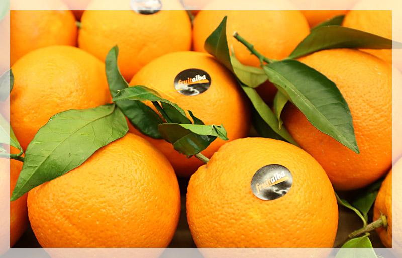 arance-navel-home
