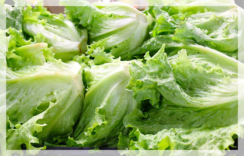 insalata-gentile-home