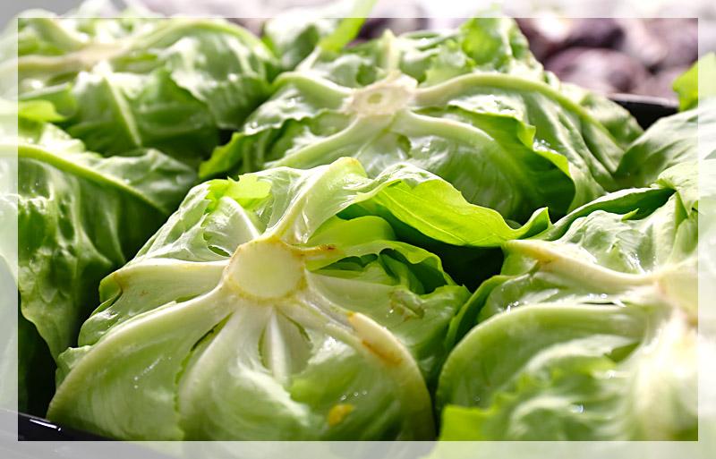 insalata-lattuga-home