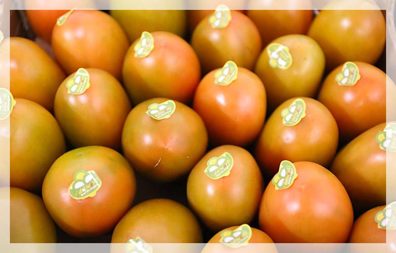 pomodoro-lancillotto-home