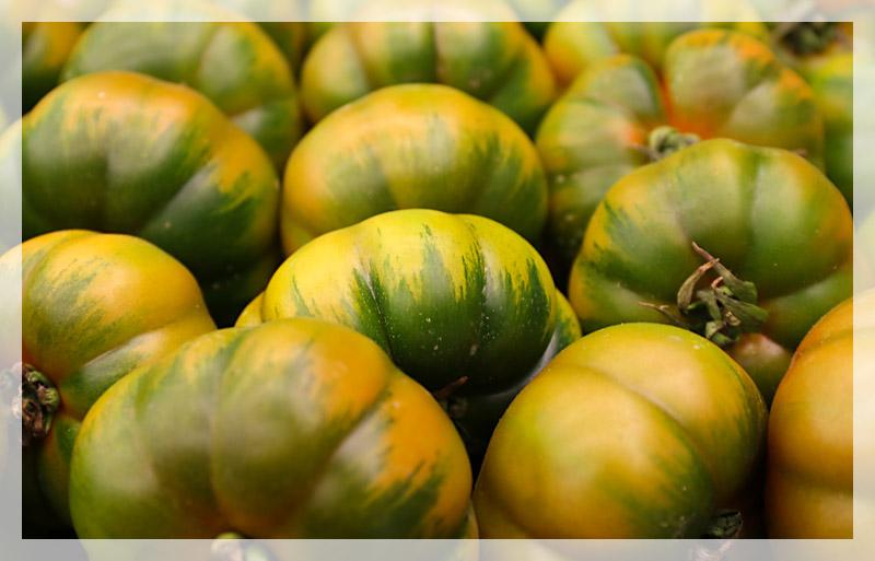 pomodoro-marinda-home