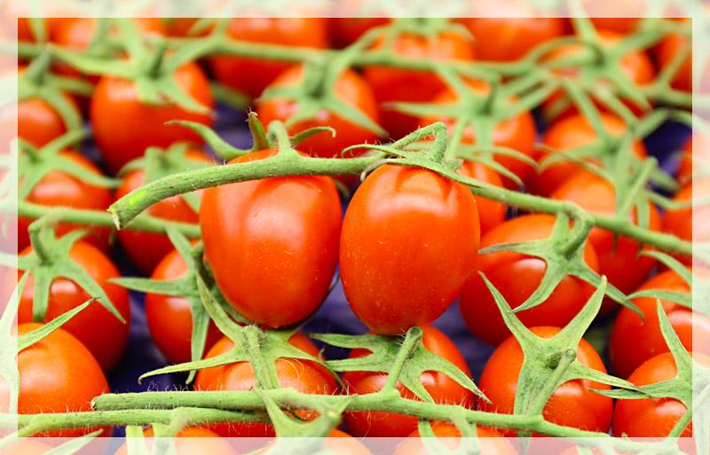 pomodoro-pixel-home